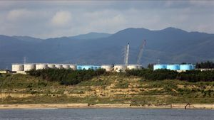 Algunos de los tanques cercanos a la central nuclear de Fukushima, que sufrió un accidente en marzo del 2011.