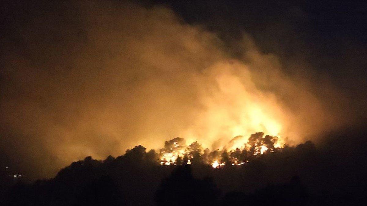 Els bombers miren d'extingir un incendi forestal a Tortosa