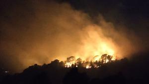 El incendio forestal se declaró en la tarde de ayer en la zona de Coll Redó, en el término municipal de Tortosa.