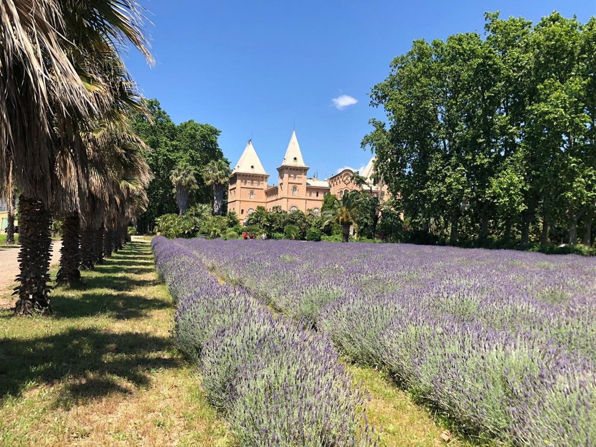 El jardín histórico Parc Samà, en Cambrils.