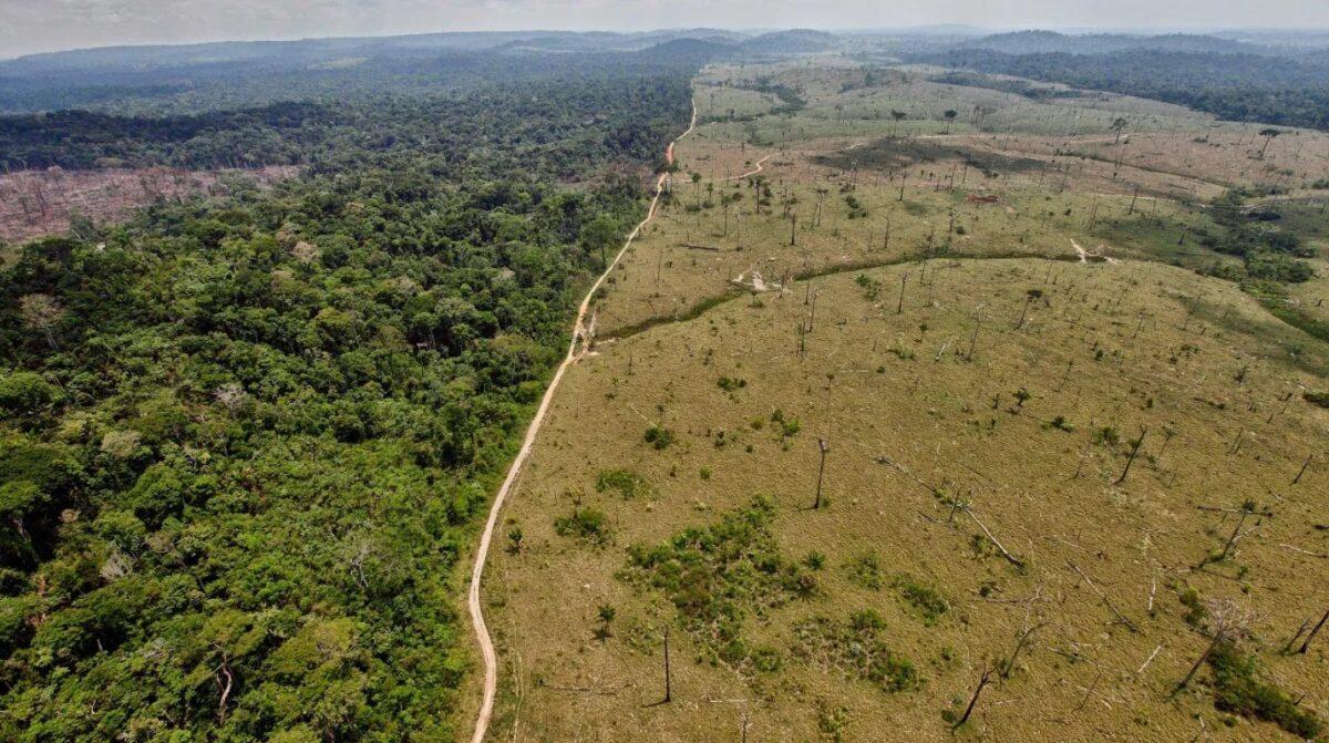 No solo Brasil, también Perú acelera la deforestación del Amazonas