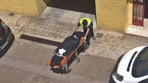 Los operarios de la funeraria trasladan el cadáver de la mujer asesinada en l'Alcúdia de Crespins.
