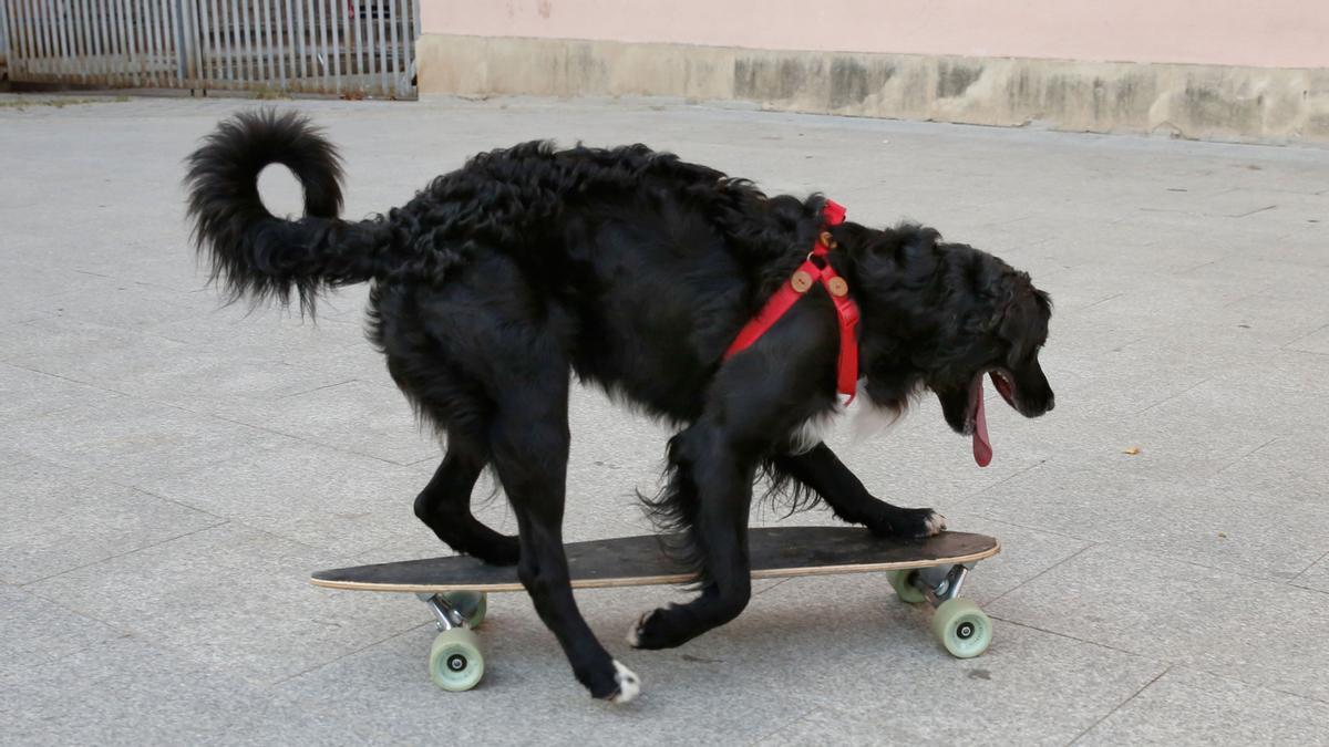 Compa, @compatineta en Instagram, rueda sobre un skate detrás de la plaza del Macba.