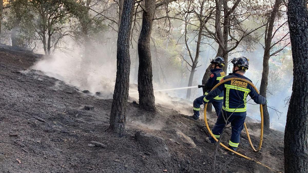 El cuerpo de bomberos realiza recorridos diarios para el conocimiento del territorio, la orientación forestal sobre cartografía y la detección de observaciones