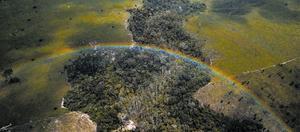 Vista aérea de un bosque deforestado en el estado brasileño de Pará, en la Amazonia.