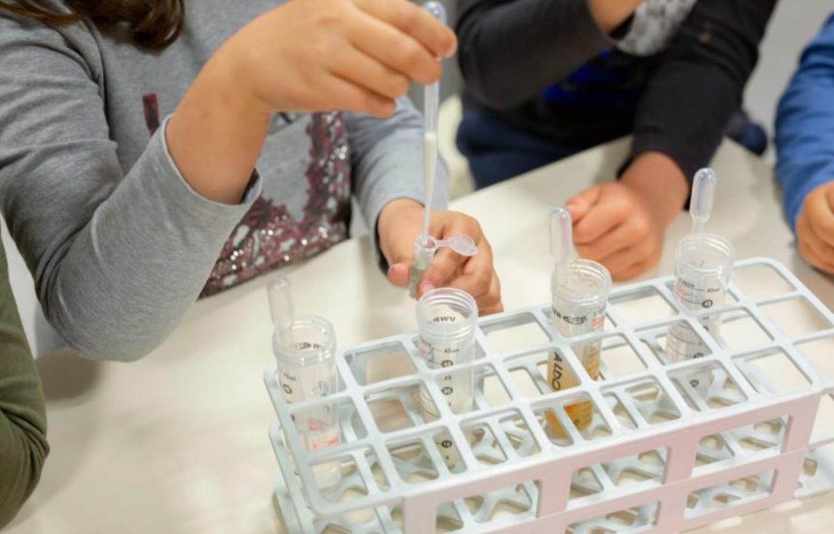 L'Hospitalet pone en marcha un programa para fomentar la ciencia entre alumnos la ciudad.