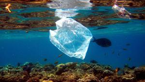 GRAF9984. Peces nadan alrededor de una bolsa de plástico en el Mar Rojo cerca de Naama Bay en Egipto, el 1 de agosto de 2007. Se calcula que cada minuto se venden en el mundo un millón de botellas de agua fabricadas con plástico y que cada año se usan un billón de bolsas de ese material. Según datos de la ONU, entre 8 y 12 millones de toneladas de plástico terminan cada año en los océanos y permanecerán allí durante décadas antes de descomponerse. Madrid acogerá del 2 al 13 de diciembre la Conferencia de las Partes (COP25) de la Convención Marco de Naciones Unidas (CMNUCC), una cita que reunirá a representantes de 195 países y en la que la se hablará de nuevas estrategias para la lucha contra la crisis climática. EFE/Archivo/Mike Nelson
