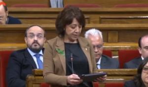 La alcaldesa de Vicpide poner fin a la costumbre de hablar en castellano a quien no parezca catalán.