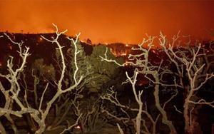 Un incendio forestal se extiende por Los Ángeles, EEEUU.