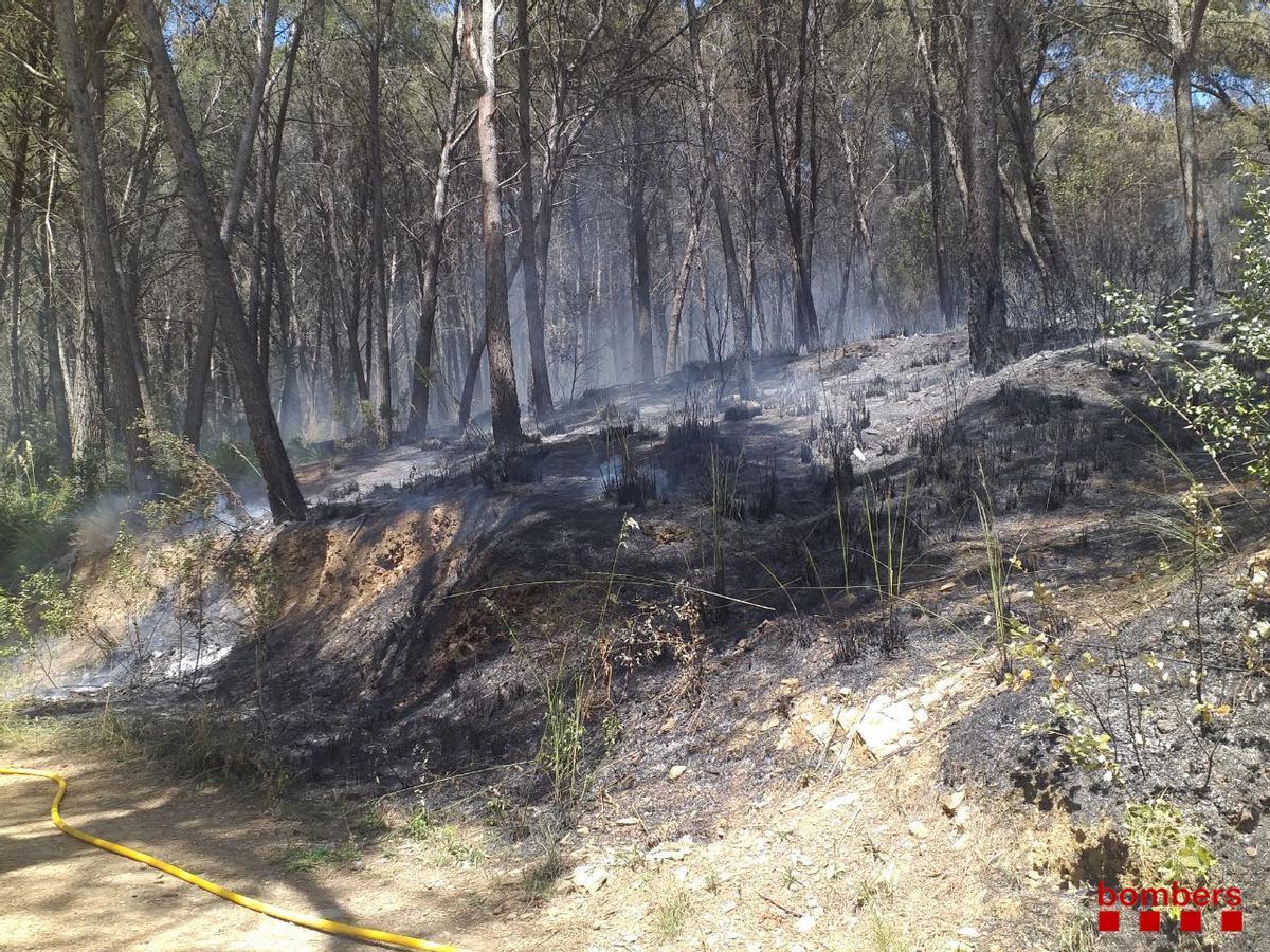 Un incencio quema 6.000 metros cuadrados en Gavà
