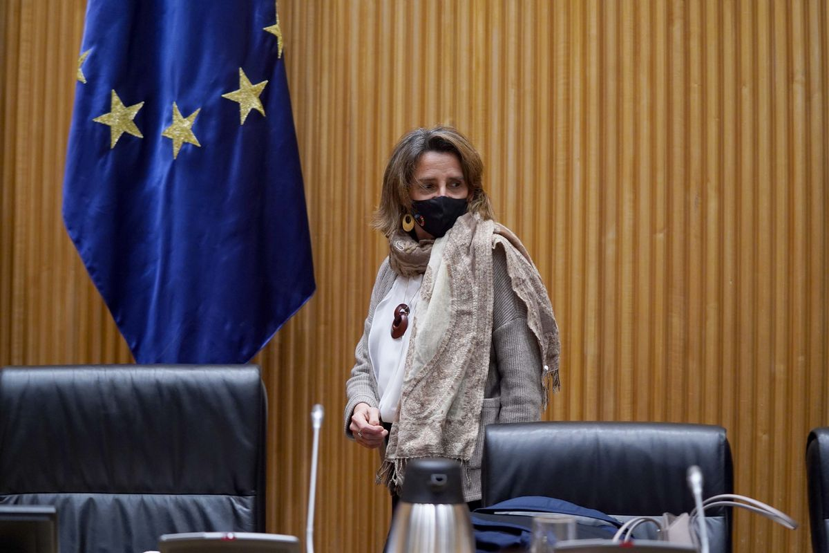 LaVicepresidenta cuarta y ministra para la Transición Ecológica y el Reto Demográfico Teresa Riberacomparece ante la Comisión de Transición Ecológica y el Reto Demográfico del Congreso de los Diputados.