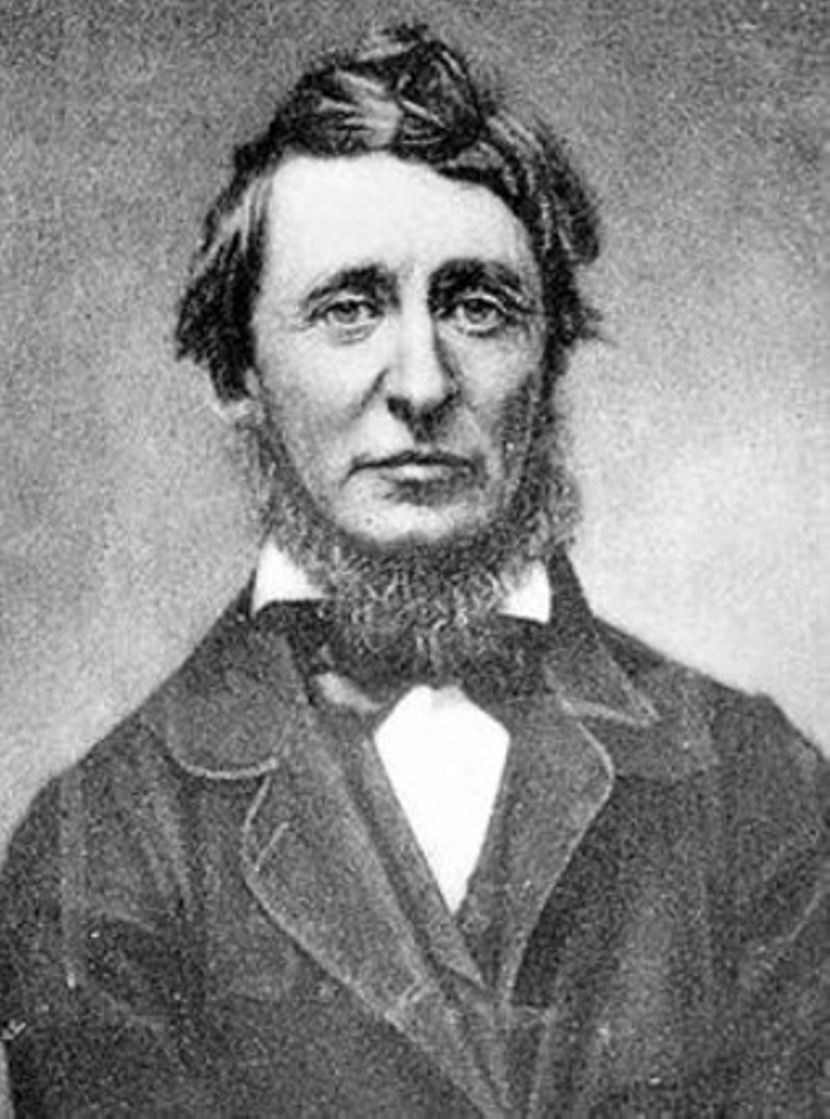 Henry David Thoreau.