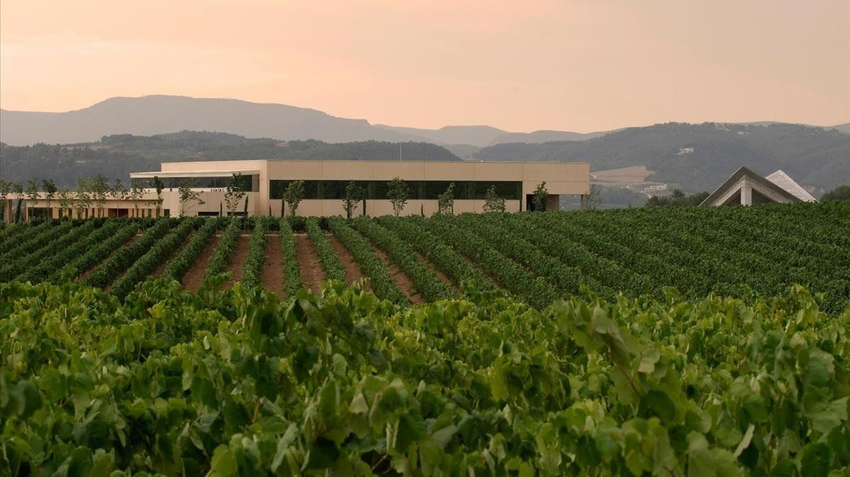 Vista panorámica de las bodegas Vilarnau, en Sant Sadurní d'Anoia.