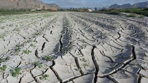 El 75% de la Península està en risc de desertització per la crisi climàtica
