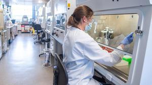 Laboratorio de la Universidad de Oxford, donde se produce lavacunaAstraZeneca.
