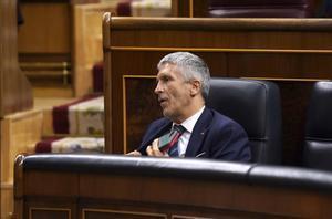 El ministro de Interior Fernando Grande-Marlaska durante el pleno del Congreso de los Diputados esta tarde.