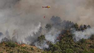 L'incendi de Castellví i Martorell, causat per una negligència humana