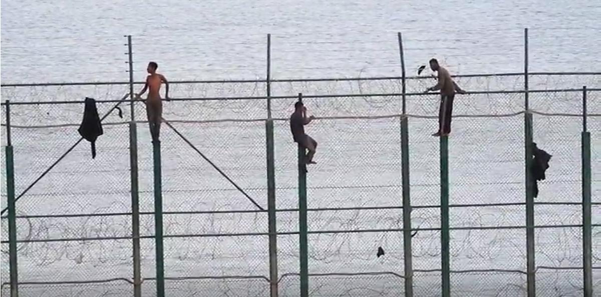 Migrantes subsaharianos durante un intento de salto a la valla de Melilla.