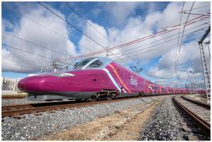 Renfe venderá billetes a 5 euros para AVLO, su tren 'low cost', a partir de este martes