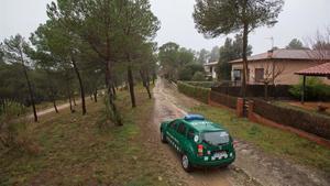 Les últimes pluges donen un respir als boscos de cara a la campanya forestal