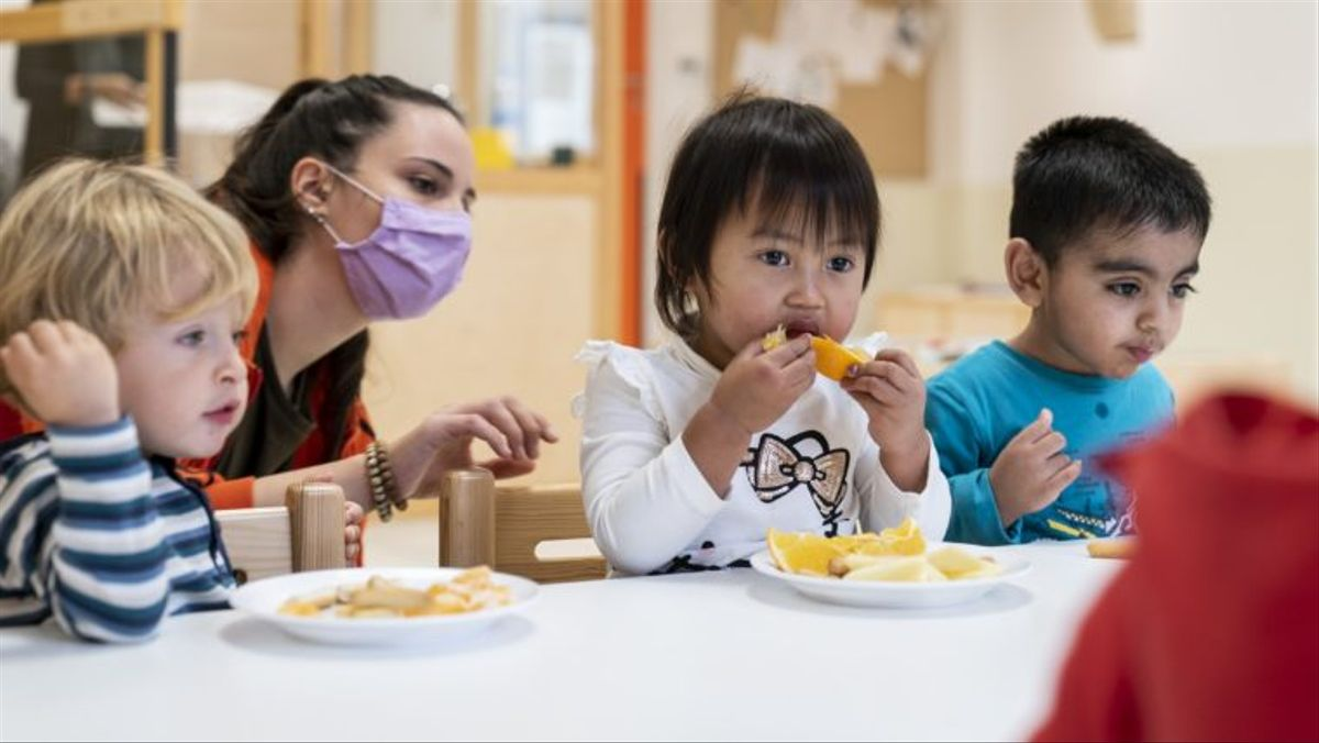 Convocatoria abierta: menús escolares saludables y sostenibles