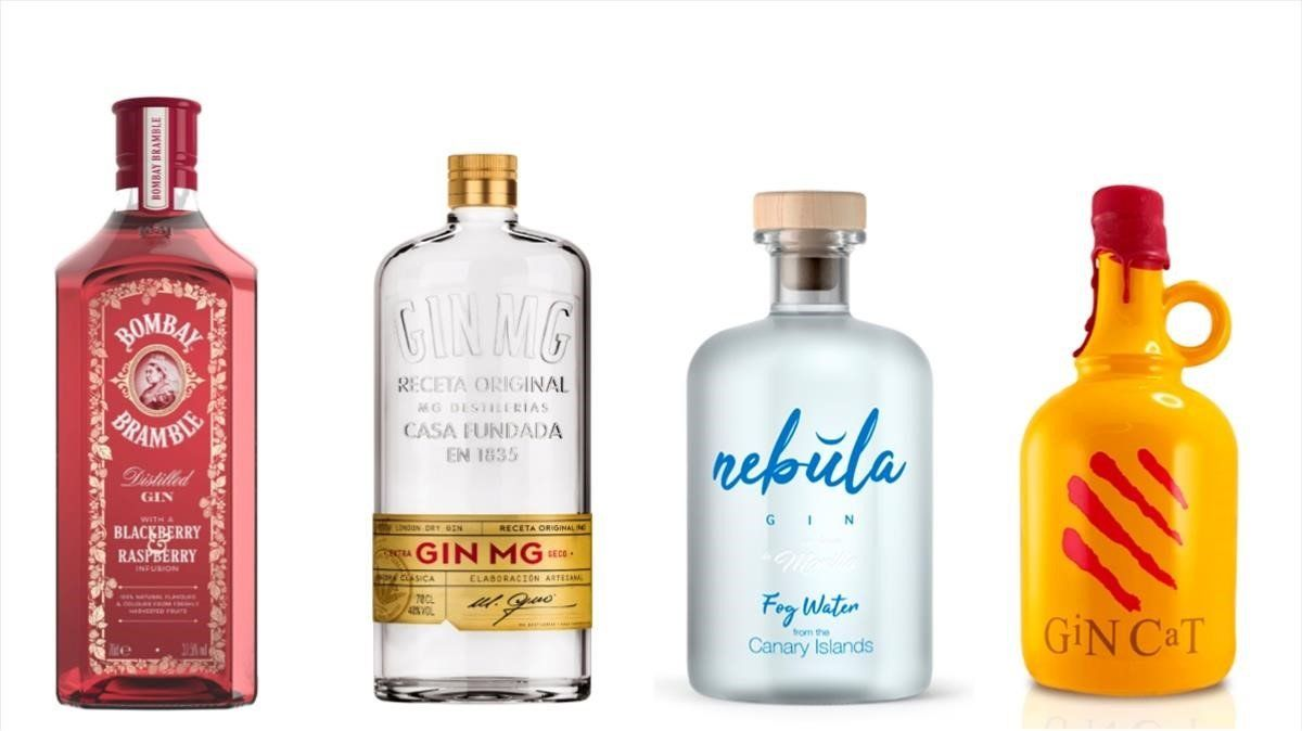 Bombay Bramble, Gin MG, Nebula y Gin Cat.