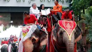 San Valentín 2020. Decenas de parejas se casan a lomos de elefantes en Tailandia.