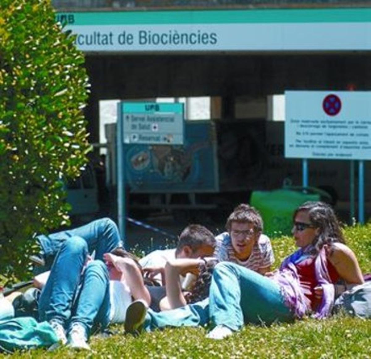 Unos alumnos en el campus de la Universitat Autònoma de Barcelona.
