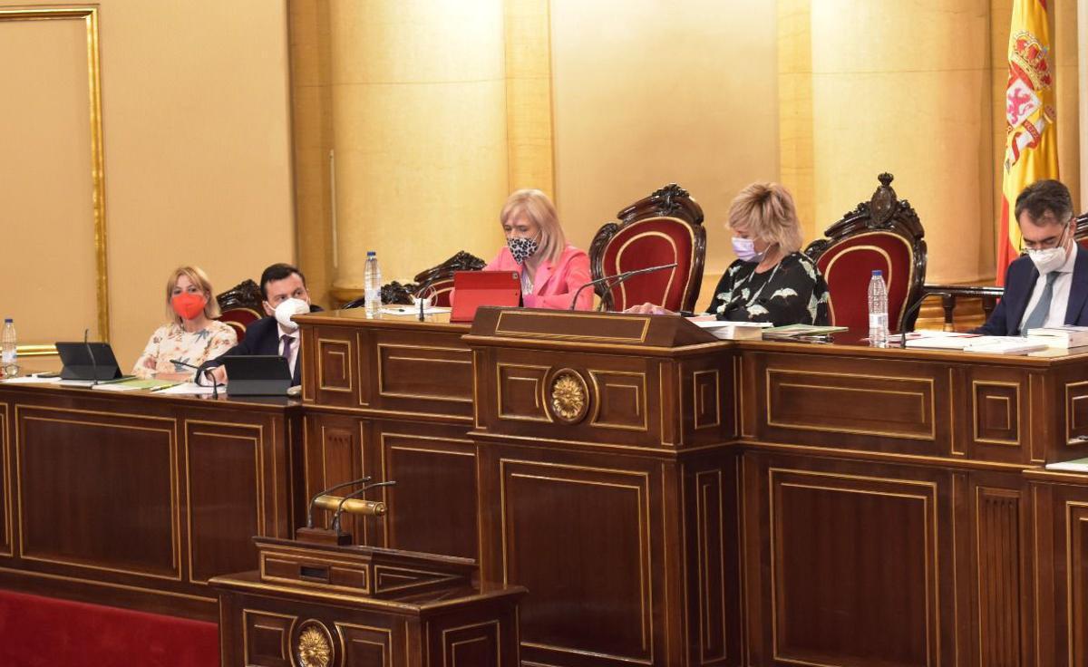L'alcaldessa d'Esplugues proposa la creació d'una Agència Local de Cooperació Internacional al Senat