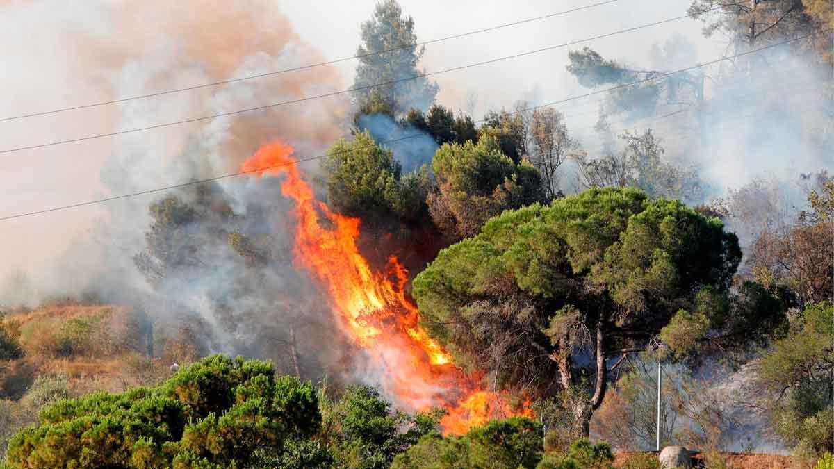 El fuego cerca de la AP-7, a la altura de Martorell.