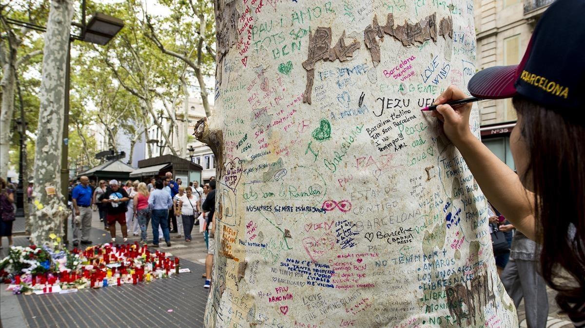 Las cortezas de los plátanos de la Rambla se llenan de mensajes en memoria de las victimas del atentado.