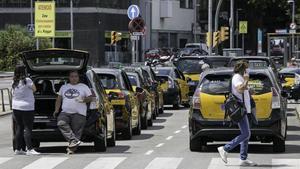 Hilera de taxistas en la parrilla de espera de la estación de Sants, en junio.