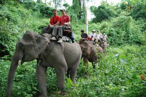 Turistas de paseo en elefante.