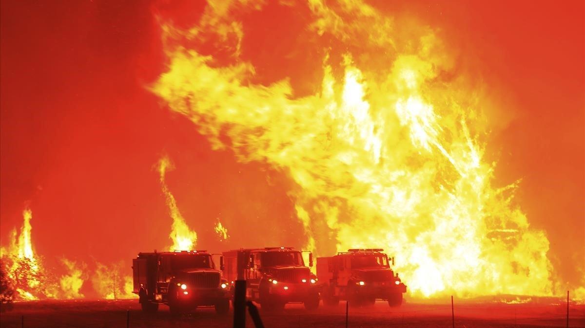 Las llamas han calcinado alrededor de 485 kilómetros cuadrados de terreno.