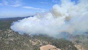 Un incendio forestal en la provincia de Tarragona arrasa 30 hectáreas en tres municipios.