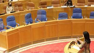 Paula Prado (PP) interviene en el pleno parlamentario.