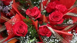 Les millors opcions per continuar celebrant Sant Jordi