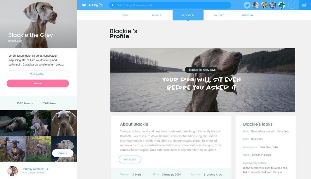 MoPETS, la comunidad online que conecta a los amantes de las mascotas
