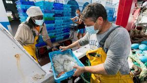 Les empreses pesqueres busquen tripulants davant de la falta d'estrangers pel coronavirus