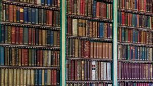 Una imagen de la biblioteca del palacio de Liria, en Madrid.