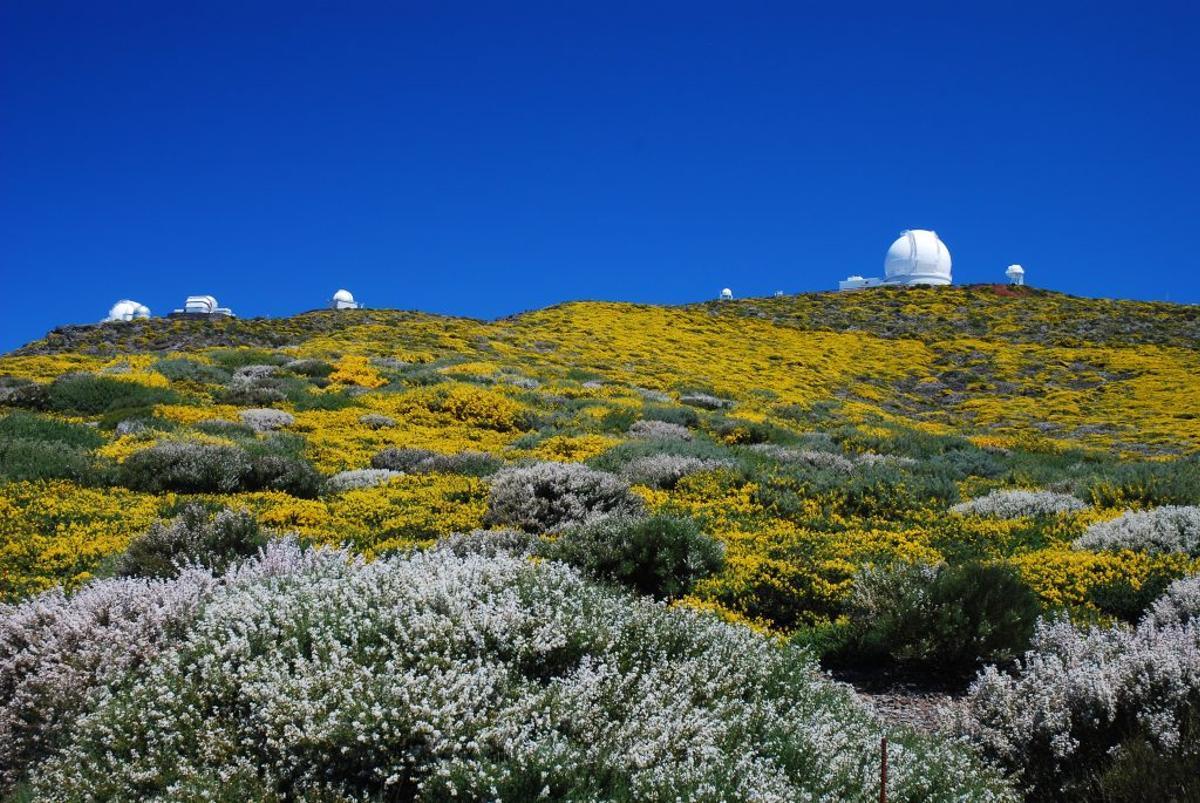 El Roque de Los Muchachos con el Grantecan al fondo.