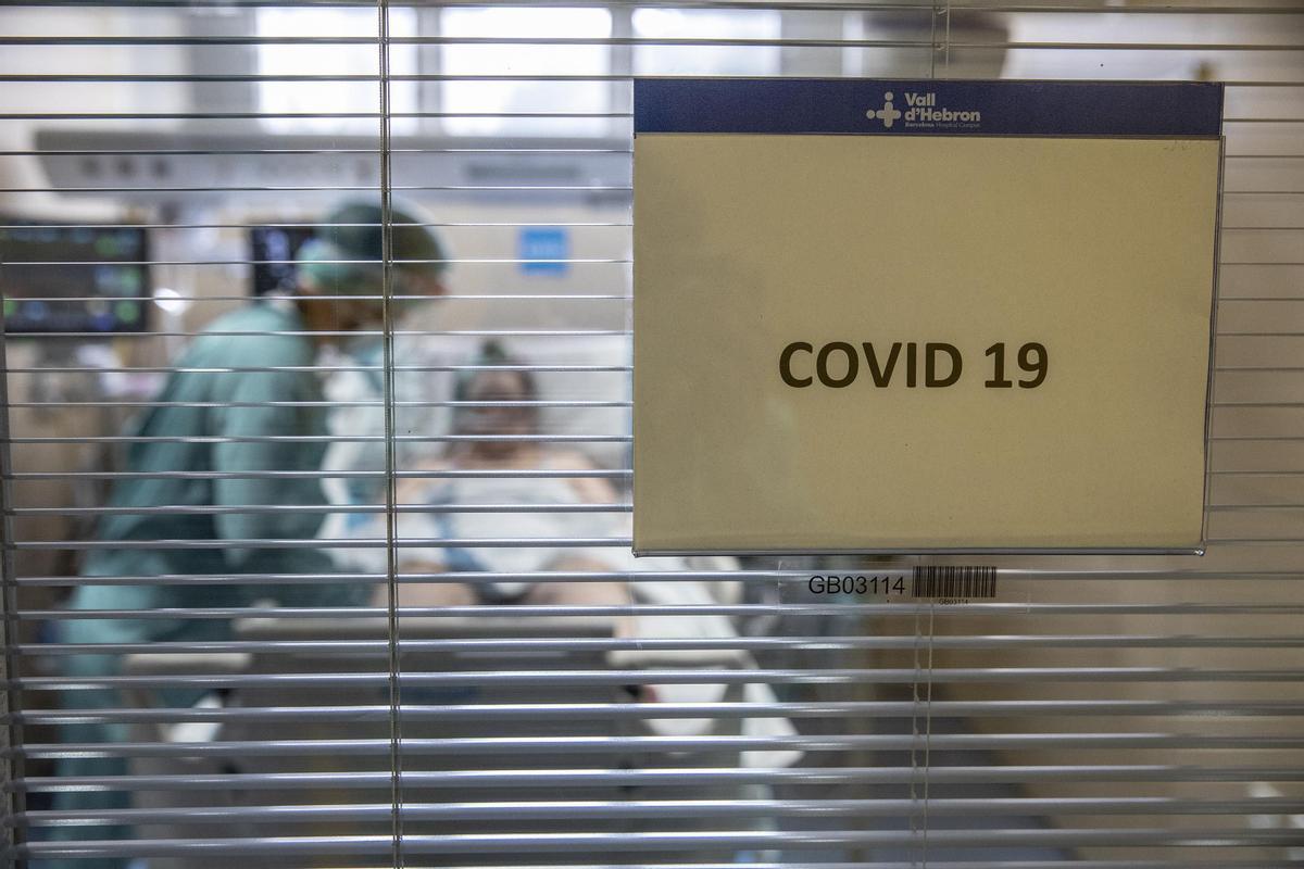 Un paciente de covid en la UCI del Hospital Vall d'Hebrón, en Barcelona.