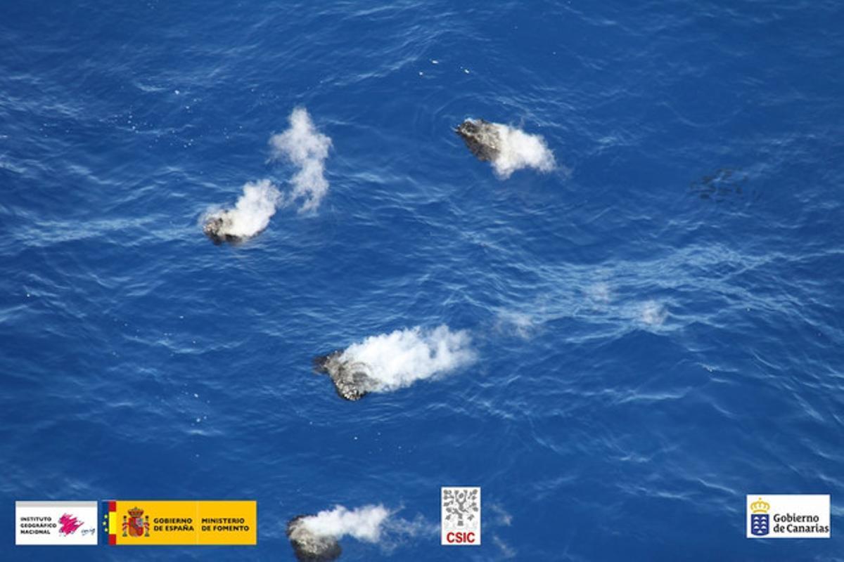 En la foto se observan manchas de texturas diferentes procedentes de tres focos alineados.