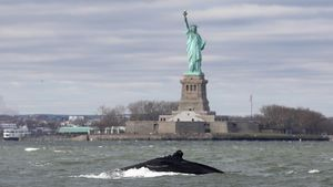 Una ballena jorobada nada junto a la Estatua de la Libertad de Nueva York