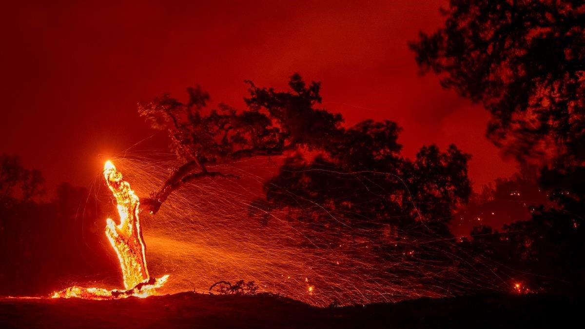 El incendio de Hennessey comenzó en la región vinícola de Napa, en el norte de California.