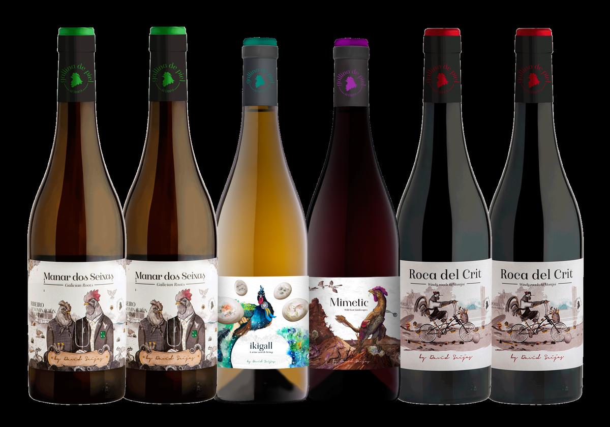 Los seis vinos de la caja Gallinero de Gallina de Piel Wines, parte de cuyos beneficios irán destinados a la protección de la raza de gallina serrana de Teruel.
