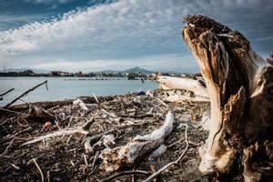 Estado del litoral en la costa de Castelvolturno, en la Campania italiana, castigado por el cambio climático.