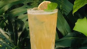 Hokkaido Lemonade.