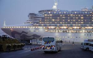 Moren per coronavirus dues persones que eren al creuer al Japó