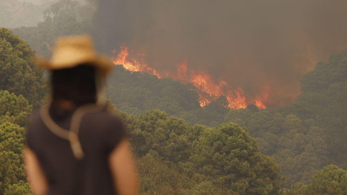 Incendio en Sierra Bermeja (Málaga).